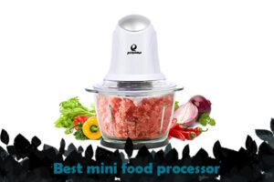 best mini food processor 2020